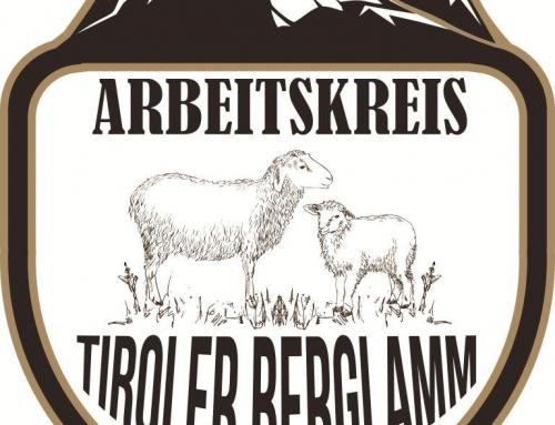 Info Arbeitskreis Tiroler Berglamm