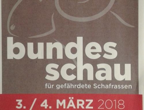Bilder Bundes- und Landesaustellung Sonntag