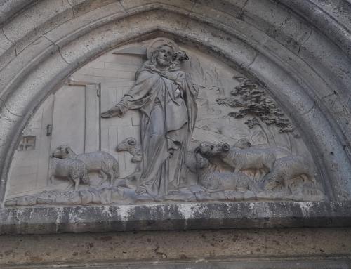 Bild 9 unseres Fotowettbewerbes: Guter Hirte bringt seine Schafe in den Stall
