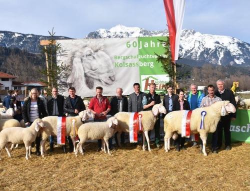 Ergebnis Jubiläums- und Gebietsausstellung Kolsassberg, 3.3.2019