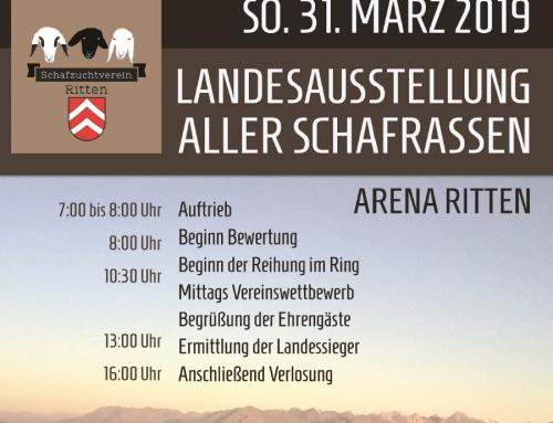 Landesausstellung aller Schafrassen in Südtirol