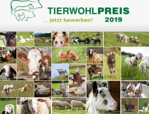 Tierwohlpreis LK Tirol 2019
