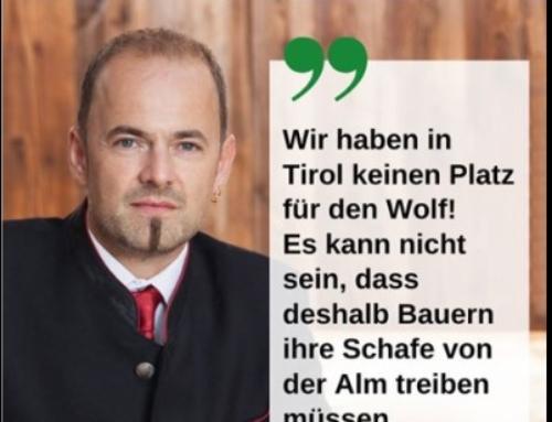 Kammerpräsident Hechenberger unterstützt die Schafbauern