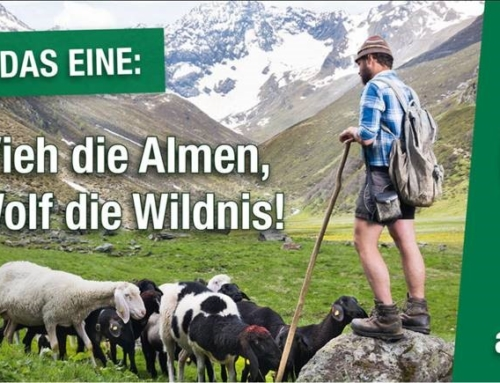 """Alm-ohne-Wolf""- Transparente"